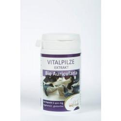 AURICULARIA Bio Vitalpilze Extrakt Kapseln 60St