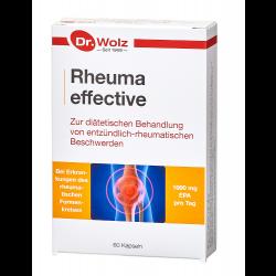 Rheuma effective Dr. Wolz Kapseln 60 St.