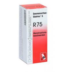 Dysmenorrhoe-Gastreu® S R75 50ml Tropfen