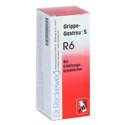 Grippe-Gastreu® S R6 22ml Tropfen