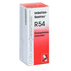 Imbelion-Gastreu® R54 22ml Tropfen