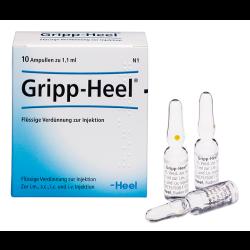 Gripp-Heel Ampullen 10St