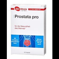 Prostata pro Dr. Wolz Kapseln 40 St.